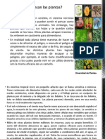 LECTURA CRÍTICA COMU IARQUEOLOGIA.pptx