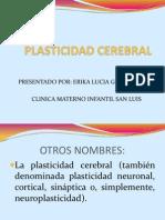Plasticidad Cerebral Expo