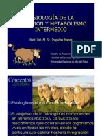 Fisiologia de La Digestion y Metabolismo Intermedio
