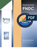 Informe de Avance PNDC. 04.03.13