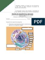 secuencia didactica de planificación