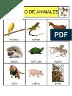Bingo de Animales Fotos