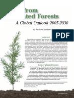 Forest Bioenergy