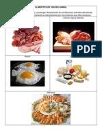 Alimentos y Carbohidratos de Lidia