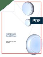 PARTICULAS MAGNETICAS1