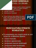 Miologie generala