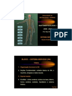 Anatomofisiologia Gd b1 Aula2
