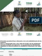 APLICACIÓN DE MEDICAMENTOS-PRESENTACION.pptx