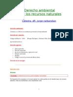 Derecho Ambiental y de Los Recursos Naturales