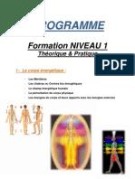 medecine energetique.pdf