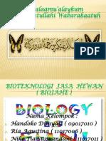 Bioteknologi Jasa Hewan