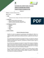 FMS(informe 1 definiciones)