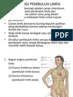 Fisiologi pembuluh limfa