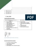 avaliação laboratorial - avaliação