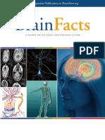 Brain Facts 2012