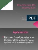 Aplicacion De Las Tecnicas De Recoleccion De Informacion