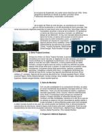 Biomas y Climas