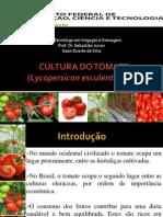 Cultura Do Tomate