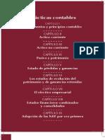 PDF Practicas Contables CD-02!02!2011-Final