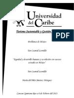Ensayo Problemas de Mexico Equidad.