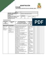 Plan Especifico Tel y Adaptacion Curricular.