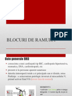EKG BRD -BRS IV