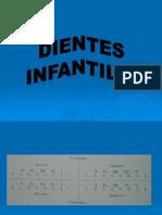 Anatomia Dientes Infantiles