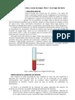 080201. Investigación de Manchas y Costras de Sangre Parte 1
