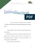 rapport de stage COLIMO.pdf