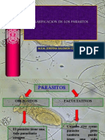clasificacionparasito-243hhdv