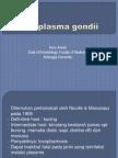 toxoplasma-gondii