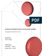 Spatial Pattern of SLSI at State Level in India