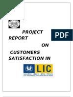 30752846 Customer Satisfaction in LIC