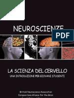 Scienza del cervello