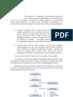 tutorial breve PRESTO.pdf