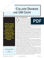 Colony Collapse Disorder and GMO Crops