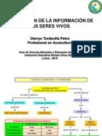 Coordinacion y Locomocion-gtp