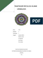 111004081-Urinalisis