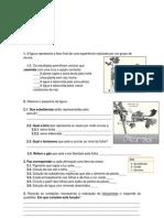 ficha avaliação 6º ano - alimentação e reprodução das plantas.pdf