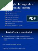 Patologia Chirurgicala a Intestinului Subtire