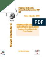 4 NG4 OrganizacionRevolucion
