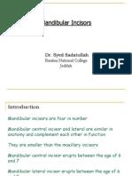 Mandibular Incisors