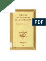 Spinoza y El Problema de La Expresion Muchnik 1999
