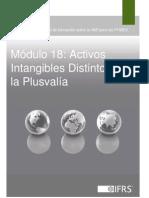 Activos Intangibles Distintos de La Plusvalia