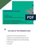 Lignocellulosic Enzymes for Lignin Production_Presentation_2007