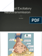 Fast Excitatory Neurotransmission