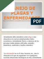 Generalidades plagas (1).pdf