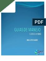2. GUIAS DE MANEJO.pdf