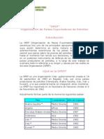 opep.pdf