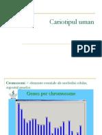 Cariotipul